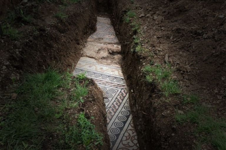 Archeologists Unearth Ancient Roman Mosaic Beneath Row of Vines